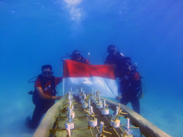 Foto: Aksi Menjaga Ekosistem Karang dan Kibarkan Merah Putih di Laut Anambas (286917)