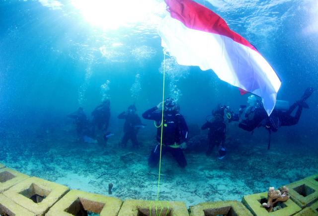 Peringati HUT RI, HARITA Nickel Tanam Terumbu Karang di Perairan Obi (105858)