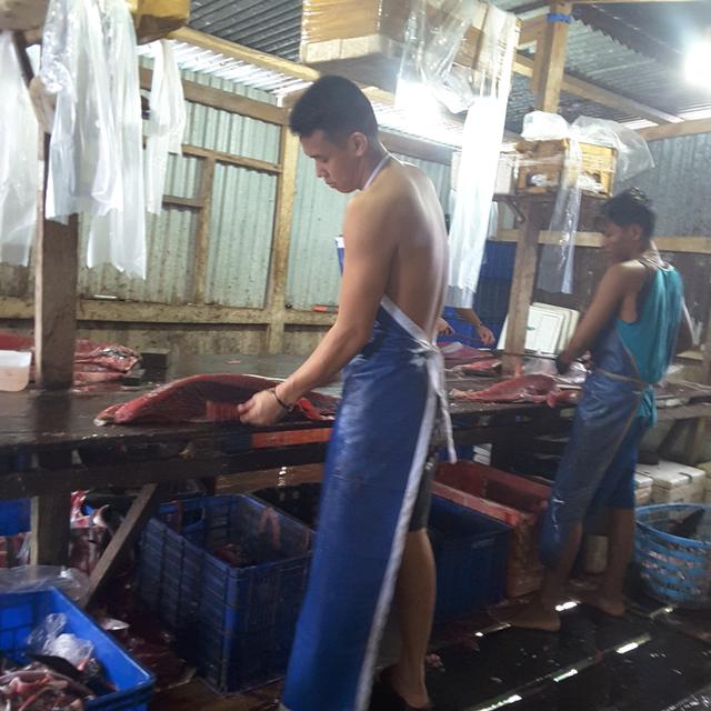 Pentingnya Kerja Sama Stakeholder dalam Upaya Penerapan SKP di Manokwari (254653)