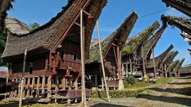 Suku-Suku di Pulau Sulawesi: Bugis hingga Talaud (14038)