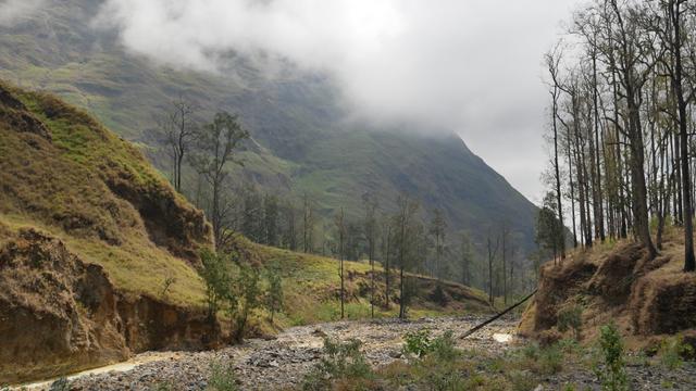 10 Hal Menarik yang Harus Kamu Tahu Tentang Jalur Torean Gunung Rinjani (72876)