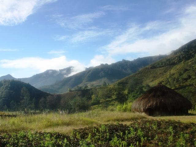 Filosofi dan Keunikan Rumah Adat Honai Asal Papua (1006429)