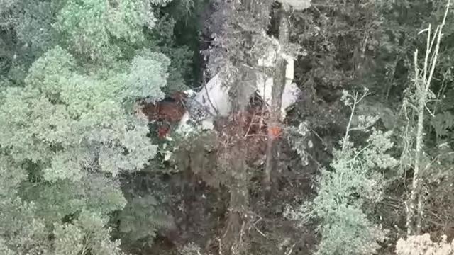 Pesawat Rimbun Air yang Hilang Kontak di Intan Jaya Papua Ditemukan (10016)