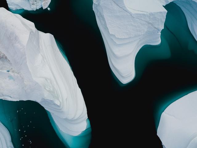 Mengapa Pemanasan Global Dapat Menyebabkan Kepunahan Spesies? (1228835)