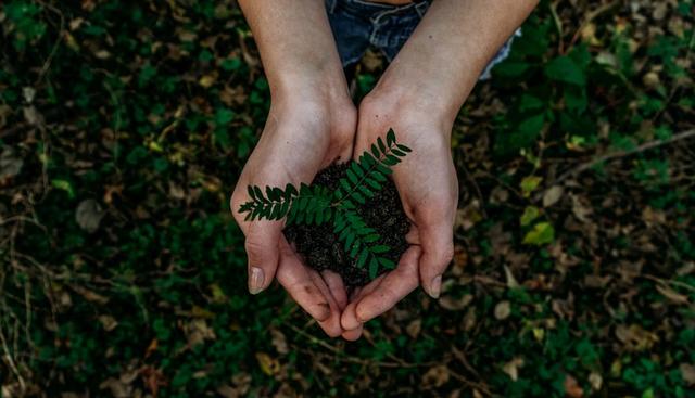 Sikap Peduli Lingkungan yang Perlu Diterapkan Agar Tercipta Kelestarian Alam (113175)