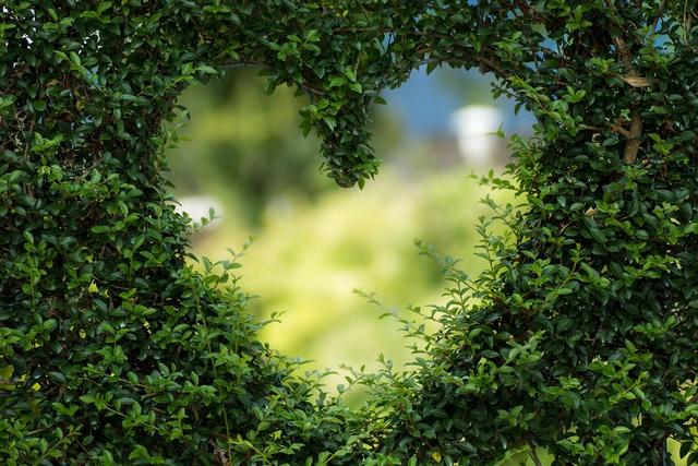 3 Kesalahan Pria yang Harus Dihindari dalam Percintaan (53317)