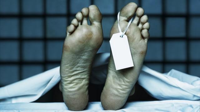 Mayat Pria Ditemukan dalam Parit di Aceh Barat, Diduga Korban Kecelakaan Tunggal (68817)