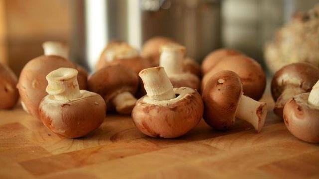 Jangan Sampai Salah, Ini Jenis Jamur yang Bisa Kamu Makan Saat Tersesat di Hutan (51548)