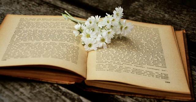 3 Ramuan Cinta yang Dipercaya Ampuh Sepanjang Sejarah (207743)