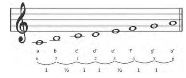 Mengenal Tangga Nada Diatonis Mayor dan Minor dalam Musik (25970)