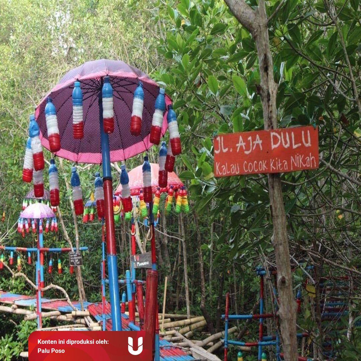 Hutan Mangrove Donggala Alternatif Wisata Awal Tahun Kumparan Com