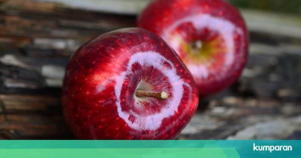 Konsumsi 10 Makanan Ini Untuk Paru Paru Yang Lebih Sehat