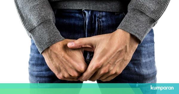 chisturi grase pe penis