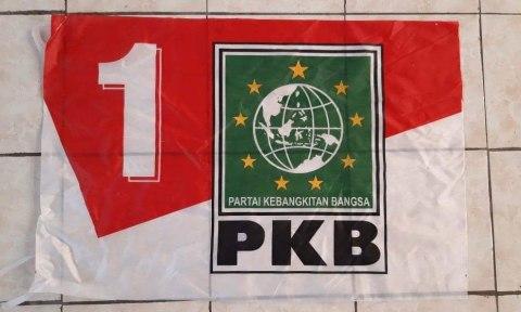 Logo Bendera PKB