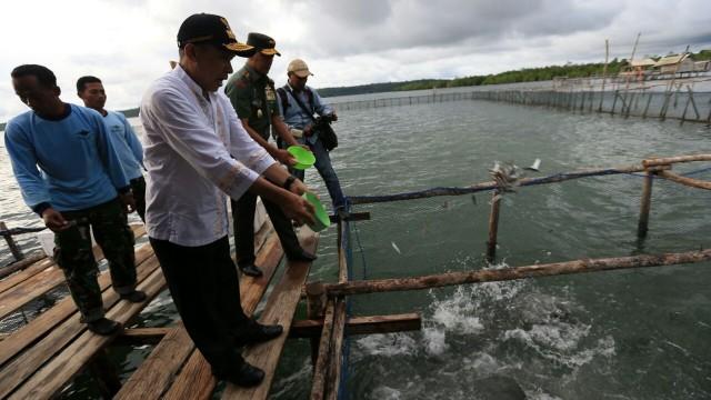 Mengembalikan Maluku Sebagai Pusat Rempah