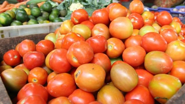Kaya Serat Dan Antioksidan 7 Manfaat Mengkonsumsi Tomat Kumparancom