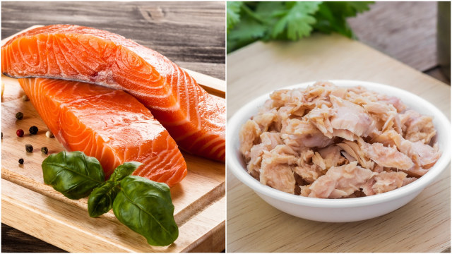 Ikan Salmon Atau Ikan Tuna Mana Yang Lebih Sehat Untuk Anak