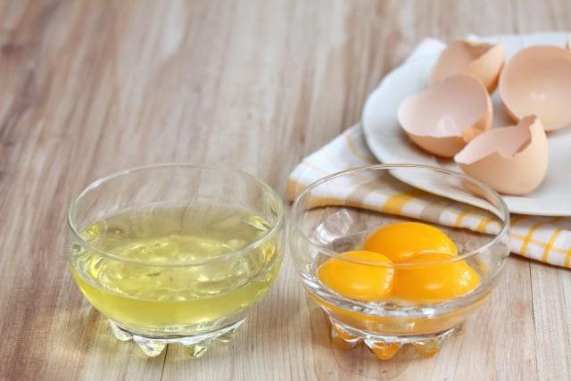 putih telur