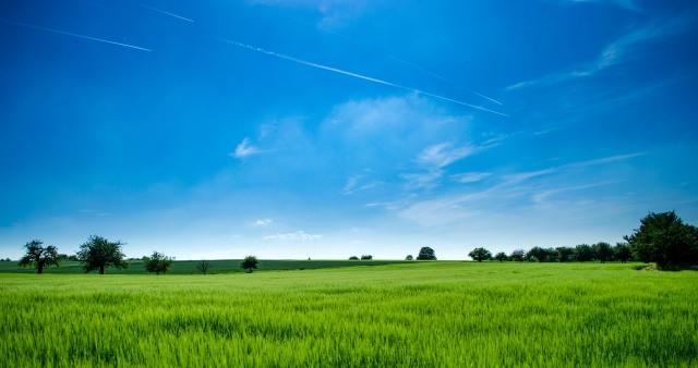 Apa Itu Perlindungan Lahan Pertanian Pangan Berkelanjutan Plp2b